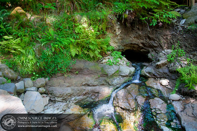 Terwilliger / Cougar Hot Springs Source