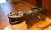 Unique Hippopotamus Victrola Phonograph