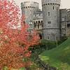 Autumn at Windsor Castle