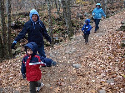 The path down to Dark Hollow Falls was a kilometer long and took half an hour to walk.