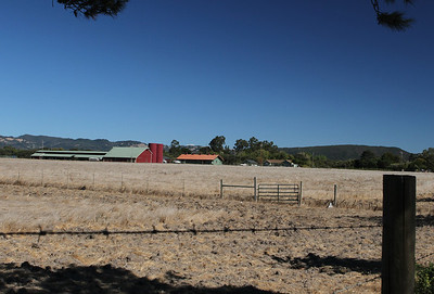 "One of the last ""non-vineyard"" farms before entering the wine regions of Sonoma and Napa."