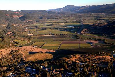 Napa Valley dreaming.