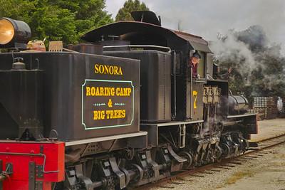 Roaring Camp Timber Rail Road