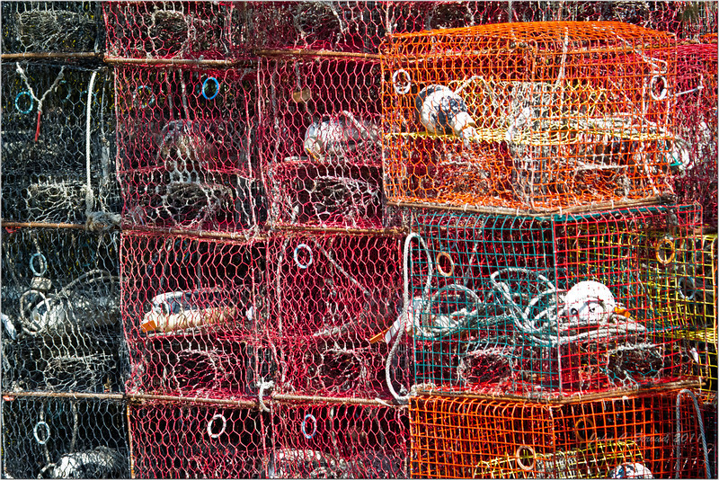 Crab Pots baking in the afternoon sun