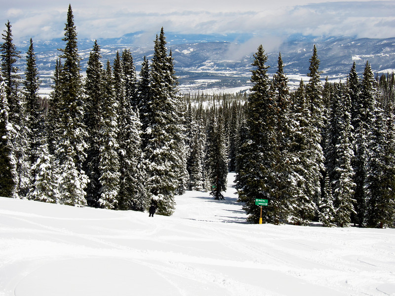 "Tree skiing at Winter Park is outstanding, beautiful and peaceful - until there is a cry for help for ""DAD!"""
