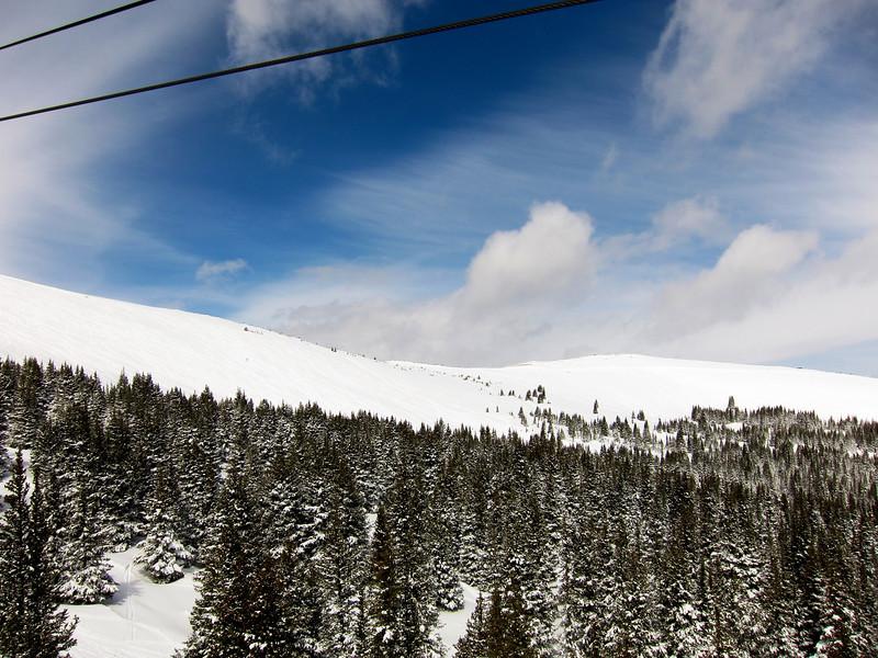 Beautiful tree skiing