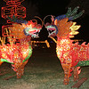 Christmas Dragons