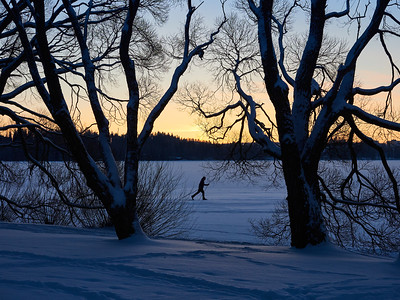 The skier on the ice