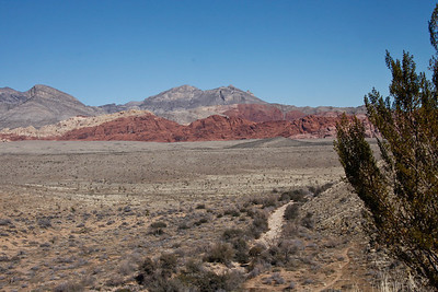 Scene at Red Rock Canyon about 20 miles west of Las Vegas.  Jan, 2011.