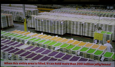 So you know:  When the entire area is filled it can hold more than 200 million jelly belly beans