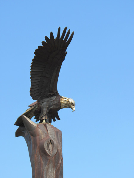 La Crosse Eagle: This majestic sculpture by artist Elmer Petersen stands 38-feet tall as it watches over the Mississippi River and Riverside Park. Eagles are present in large numbers in the La Crosse area - more than 150 have been spotted at one time.