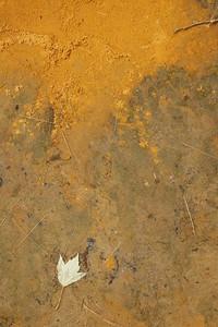 Ferris Oxide flat rock in the stream bed