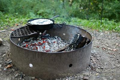 Campfire Chicken Riganato
