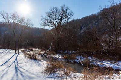Springville Branch Bad Axe River