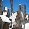 Snowcapped roofs of Hogsmeade