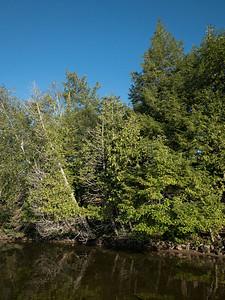 Wollaston Lake Shoreline