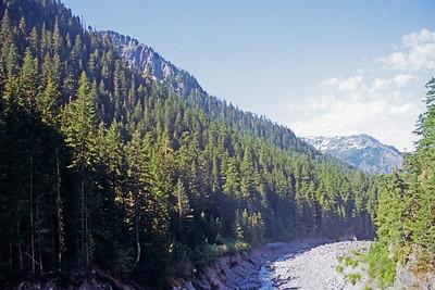 Tahoma Creek View