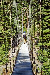 Barrett Crossing Tahoma Bridge