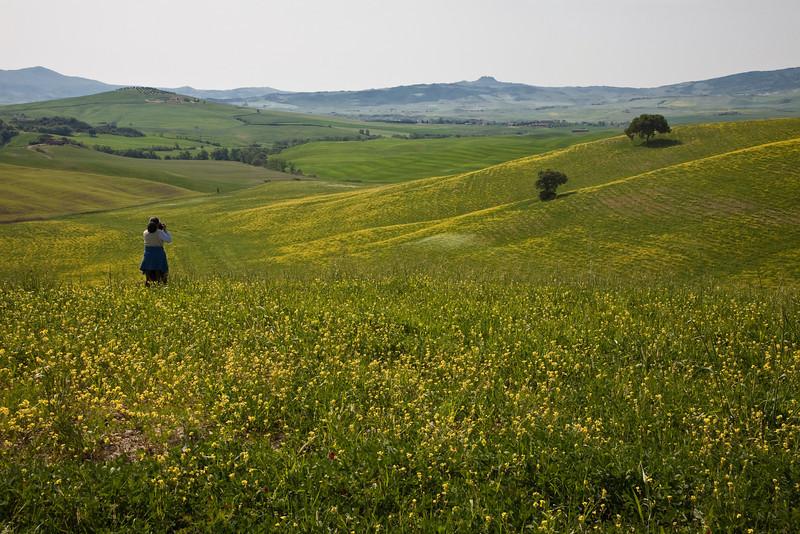 2009-05-13-Toscana-VSP-0746