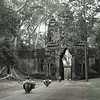 Angkor Thom North Gate