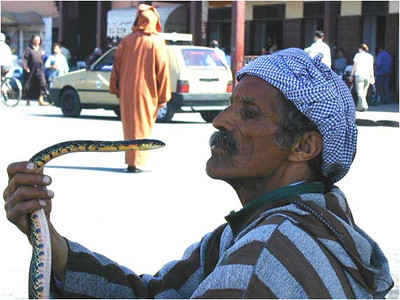 And yes, there are snake charmers in the square. And yes, the snakes are cobras. And there are street performers, musicians, acrobats, and pick-pockets. This may be like London's Covent Gardens on drugs.