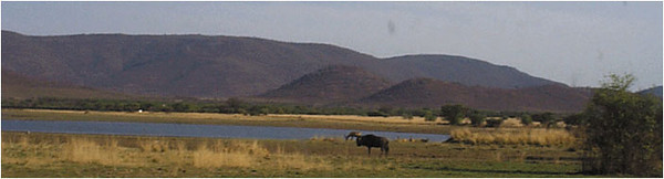 Watering Hole: Near the center of the park, this watering hole is more typical of the arid parkland. The picture shows a water buffalo and an antelope approaching to drink.