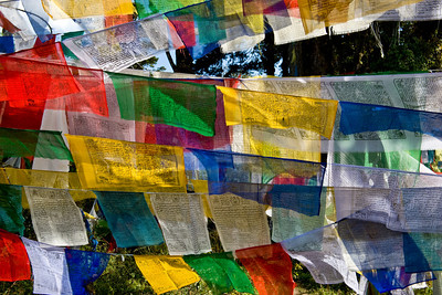 Bhutan is a Buddhist country. And Buddhism lies close to the surface here. It lies close to the surface of the psyche of the folks we met and talked with. It's close to the surface of their behavior. One manifestation is the prayer flags we saw all over. You can buy prayer flags everywhere, have them blessed to whatever purpose you choose by a local Lama, and hang them to send your prayers along.  It's a simple image, but one of my favorites.