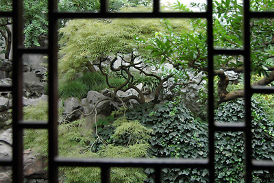 Next day we spent the morning in the center of Old Shanghai at the Yu Gardens and Bizarre. This was a very pretty, classical Chinese garden, originally built in 1557. During our trip we visited several others but the photo to the left was one of my favorites. I was surprised how popular and crowded the gardens were. There were few westerners but the gardens must be in all the local Chinese guidebooks as a must-see destination.