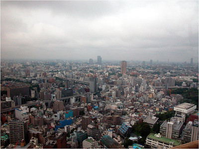 Tokyo city covers something like 2,500 square kilometers. From the observation level of the Tokyo Tower, it is impossible to see to the edge of the city. In this respect, it resembles Mexico City. Most of the building are not that tall (probably 5 stories on average).