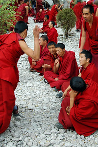 While in Lhasa, we visited the Sera Monastery. This is an academic institution which trains monks. Part of their training takes the form of vigorous debate. They will argue a position and when one of the participants gets the right answer or scores a point, another will clap his palms together loudly ... as in the photo. Get the point wrong and the other will slap the back of one hand loudly into his other palm. Right or wrong there's a lot of clapping and slapping going on. It was a nice day and we arrived during one of these debating sessions which occurred in an outdoor court yard.