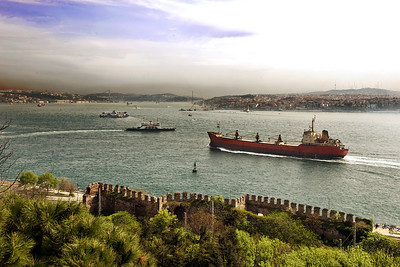 Bosporus: This was taken from the Topkapi Palace grounds. The bridge just barely visible in the background joins Europe and Asia.
