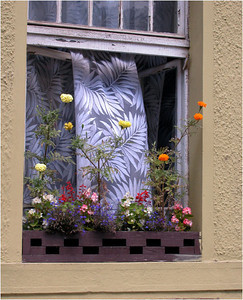 We might as well start with my favorite picture. Walking along the street between my hotel and the Old Town Square, I came across this lovely window. The bright sunshine and lace curtain contrast nicely with the dark interior of the house. And the window box flowers accent the whole with splashes of color.