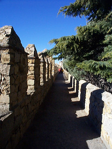 This is arguably the best preserved medieval wall in Europe. From the gardens of the Parador, you can climb to the top of the wall and walk along a short stretch of it. On weekends, the promenade around the wall is where the people of the city walk to see and be seen, an interesting glimpse into Spanish culture.
