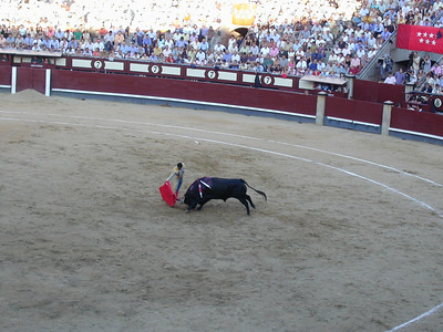 Enter the matador. Weakened to the point that one man can survive the fight, the bull squares off against a single matador. The matador further weakens the bull with pass after pass at the red cape. This is ballet of a different kind ... not so much strength but elegant finesse. This is not the beginning of the end, but it is certainly the end of the beginning.