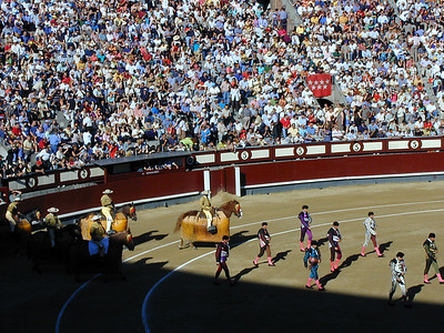 As the Bullfights begin, there is a procession lead by the matadors. They are followed by assistant matadors, picadors and armored horses and riders. Each has a role to play. Spain's best known matadors command a following not unlike an NBA star. Young men dream of being a matador and for many it is a ticket to wealth just as professional sports is in many parts of the world.