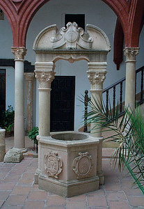 Much of the Palacio Mondragon was reconstructed after the Christian reconquest of Spain from the Moors. Today it's an interesting snapshot into 15th century Spain. This is a well in one of the interior courtyards.