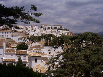 The typically white houses and buildings of Ronda set among the trees.