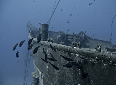 On two of our dives, we dove the wreck of the Carthaginian. It's an old two-masted sailing vessel lying in 100 feet of water south of the town of Lahaina. The top of the wheelhouse is at 80 feet. And the top of the mast is about 30 feet. It's a fun dive because the wreck has become a habitat for lots of neat fish.