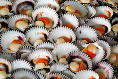 One of the things I enjoy seeing when I travel is the local market. As Lima is on the coast, one of their local markets was devoted to sea food. It had all the requisite slippery, gooey, slimy things, but the presentation was wonderful. Take a look at these scallops (at least I think they're scallops.)