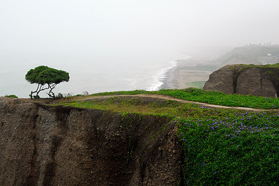 Not only is Lima on the Pacific coast, it is built on a bluff overlooking the sea. Much of the edge of the bluff in Miraflores is devoted to parks. While we were there the weather was in the low 70s which seemed pretty cool for a country practically on the equater. This resulted from a strong on-shore wind which brought the cooling effect of the cold Pacific water.