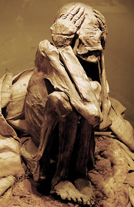Lima has a great Museum of Anthropology and Archeology which we visited. Most of it was devoted to the study of the Incas and the pre- and post-Incan peoples. It was really pretty cool. The photo is of a mummy. Unlike Egyptian mummies, for example, the dead were arranged in a fetal position, wrapped in their mummy accouterments and interred sitting up. I have to admit this was a bit creepy but also fascinating.