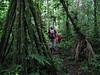 Bolivia-Amazon 036