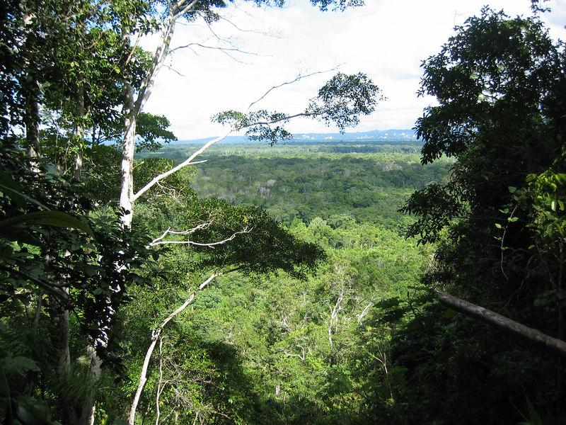 Bolivia-Amazon 053