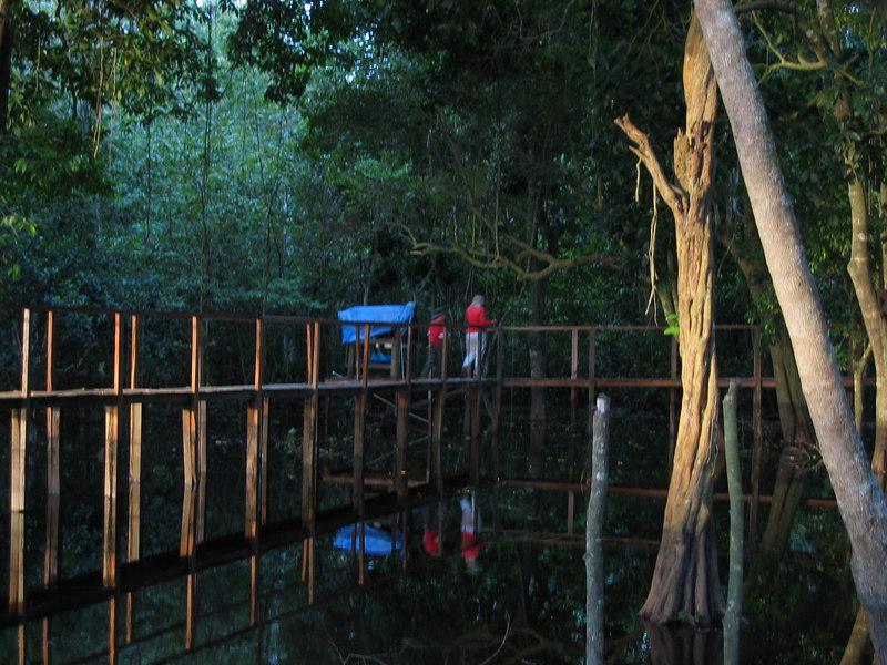 Bolivia-Amazon 076