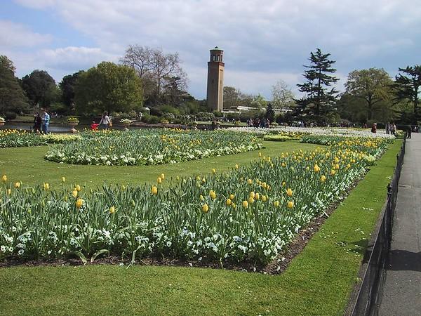D0037.JPG - 07/05/01 2:45pm   Sample of the lovely flowers in Kew Gardens.