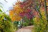 Lincoln Gardens<br /> Springfield, IL