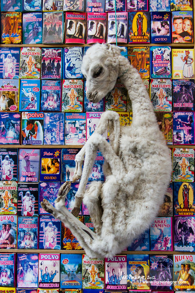 hechizos y pequeña llama muerta, ofrenda a pachamama (madre tierra) / spells and dead baby llama, offering to pachamama (mother earth)