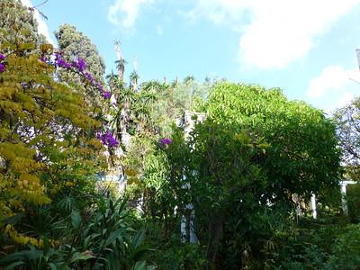 Tangiers, 2013