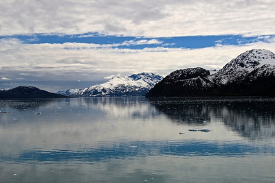Johns Hopkins Inlet