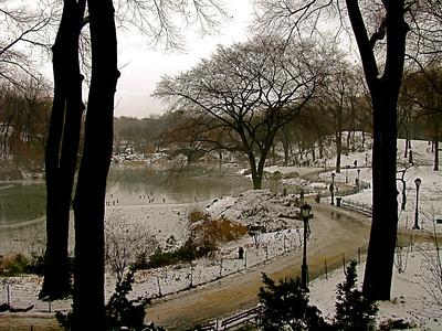 Central Park, New York December 2008